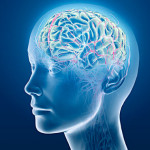 Bullying Can Cause Long-Term Brain Damage